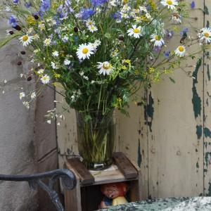 gardening-strauss1